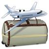 Нормы провоза багажа в самолете Нормы провоза багажа в самолете